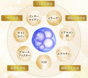 ハリッチプレミアムリッチ口コミ,ヒト幹細胞美容液